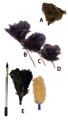 featherduster